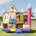 Princess Jumping Castle Slide Combo